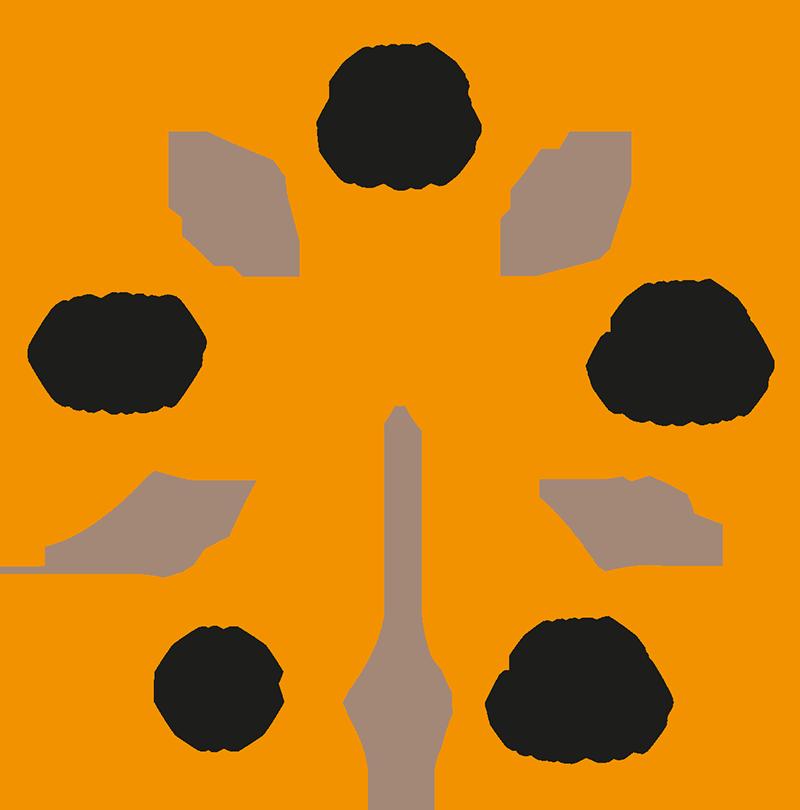 De stappen van K.I.M